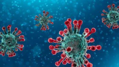 Photo of 'كورونا الجديد'.. فيروس أسرع انتشارا وأقل عدوانية