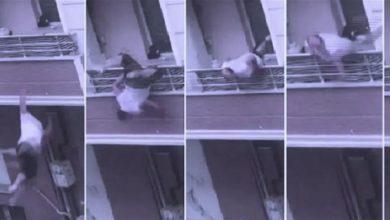 Photo of تداول فيديو عبر واتساب في لبنان عن رجل تشاجر مع زوجته ثم وقع من الشرفة… ما حقيقته؟