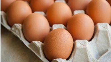 Photo of لا بيض في الأسواق… سعره سيرتفع ولن يستقرّ على 12500 ليرة!